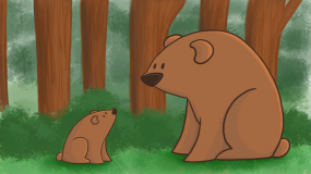 Big Bear and Little Bear