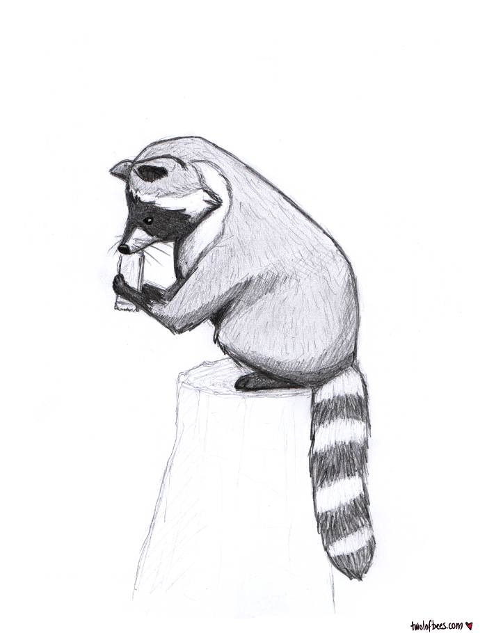 Firewatch Raccoon